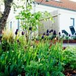Dagens på G i trädgården