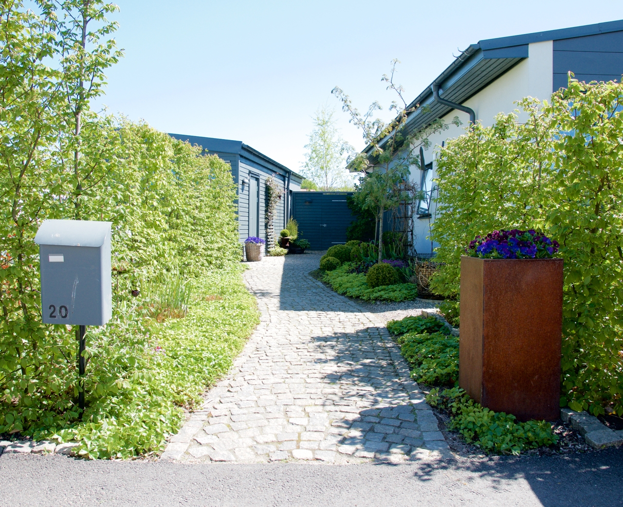 Buxbom arkiv   sida 2 av 3   arkitektens trädgård