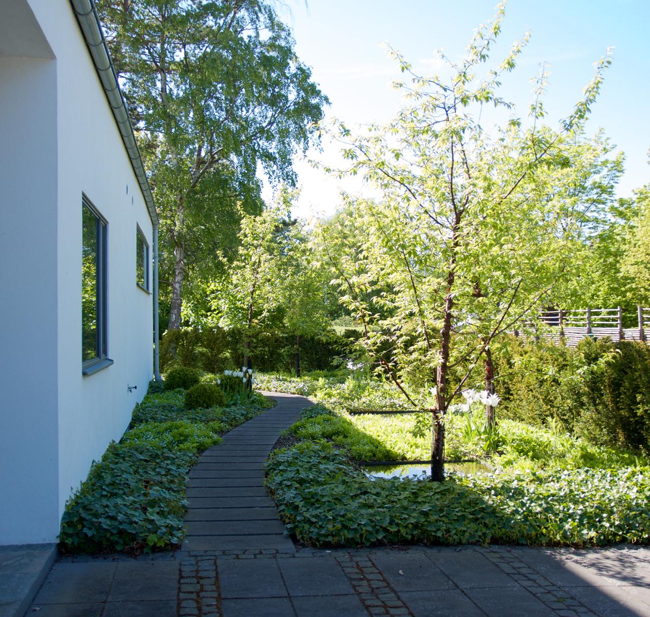 medelhav-arkiv - Arkitektens Trädgård