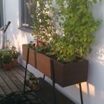 Planteringslåda med spaljé från Hasselfors