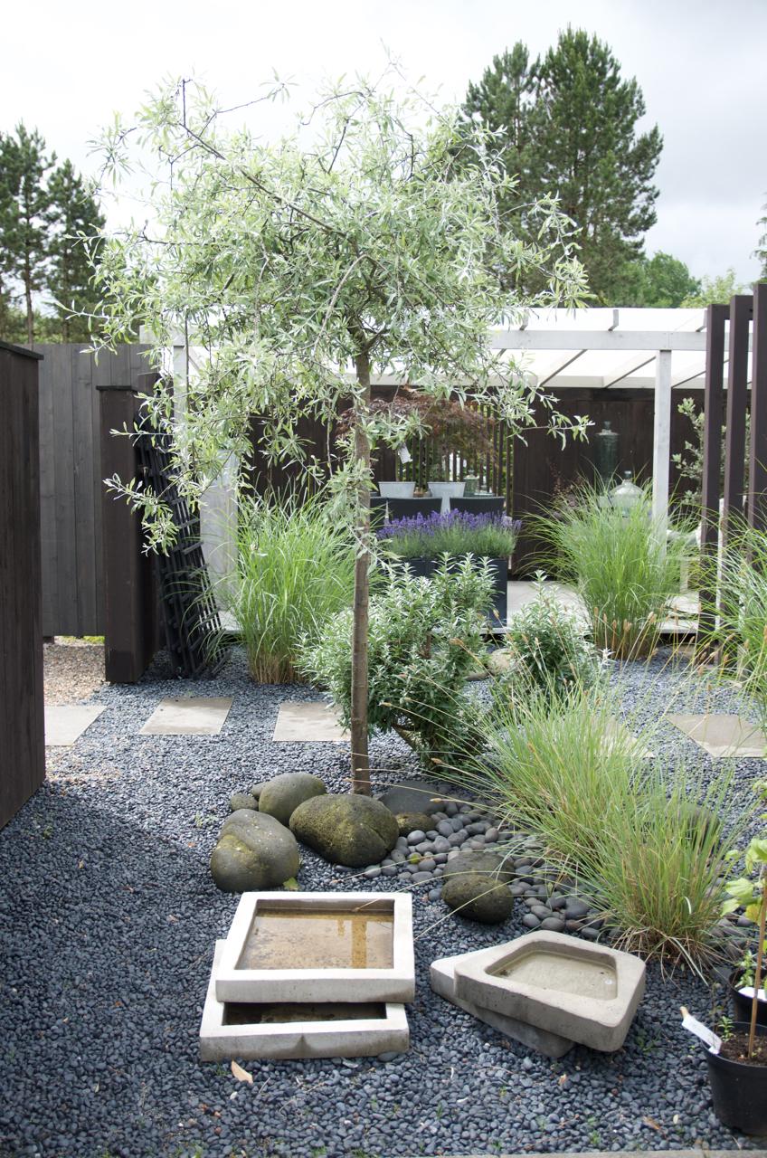 Besök på Träslövs trädgård - Arkitektens Trädgård