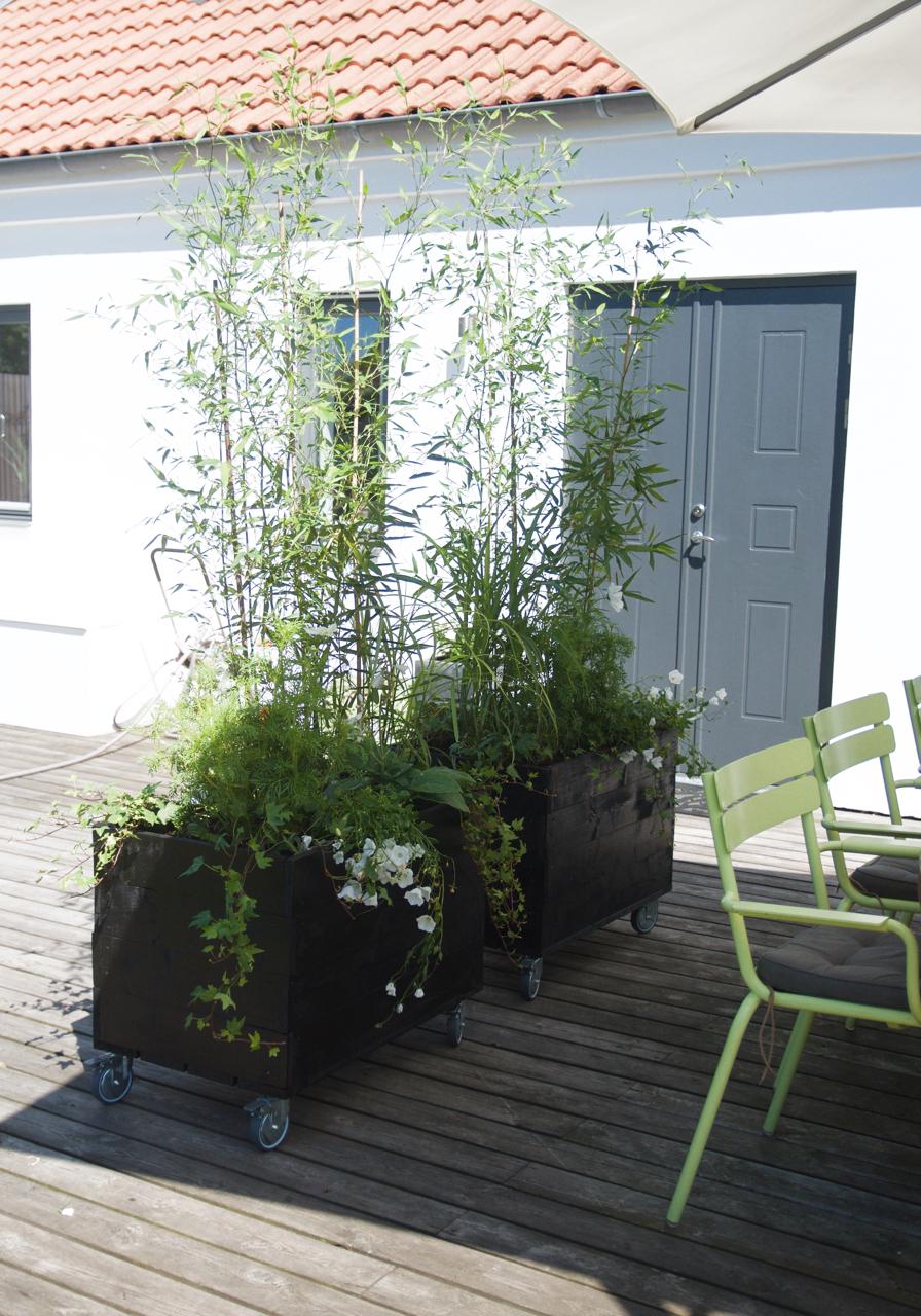 Nytt projekt på altanen- rullande planteringar! - Arkitektens Trädgård
