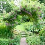 Ett efterlängtat besök i en ljuvlig Ramlösaträdgård.
