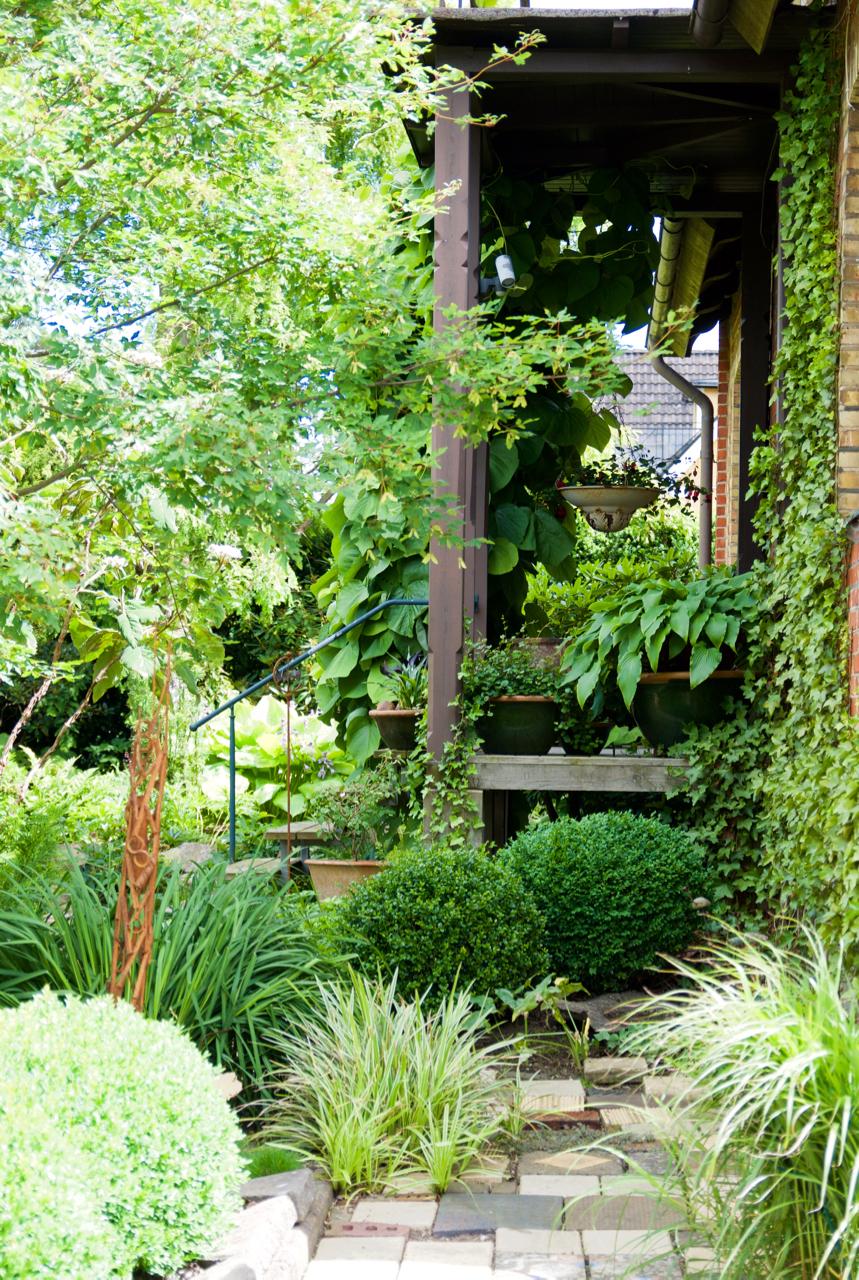 pipranka-arkiv - Arkitektens Trädgård