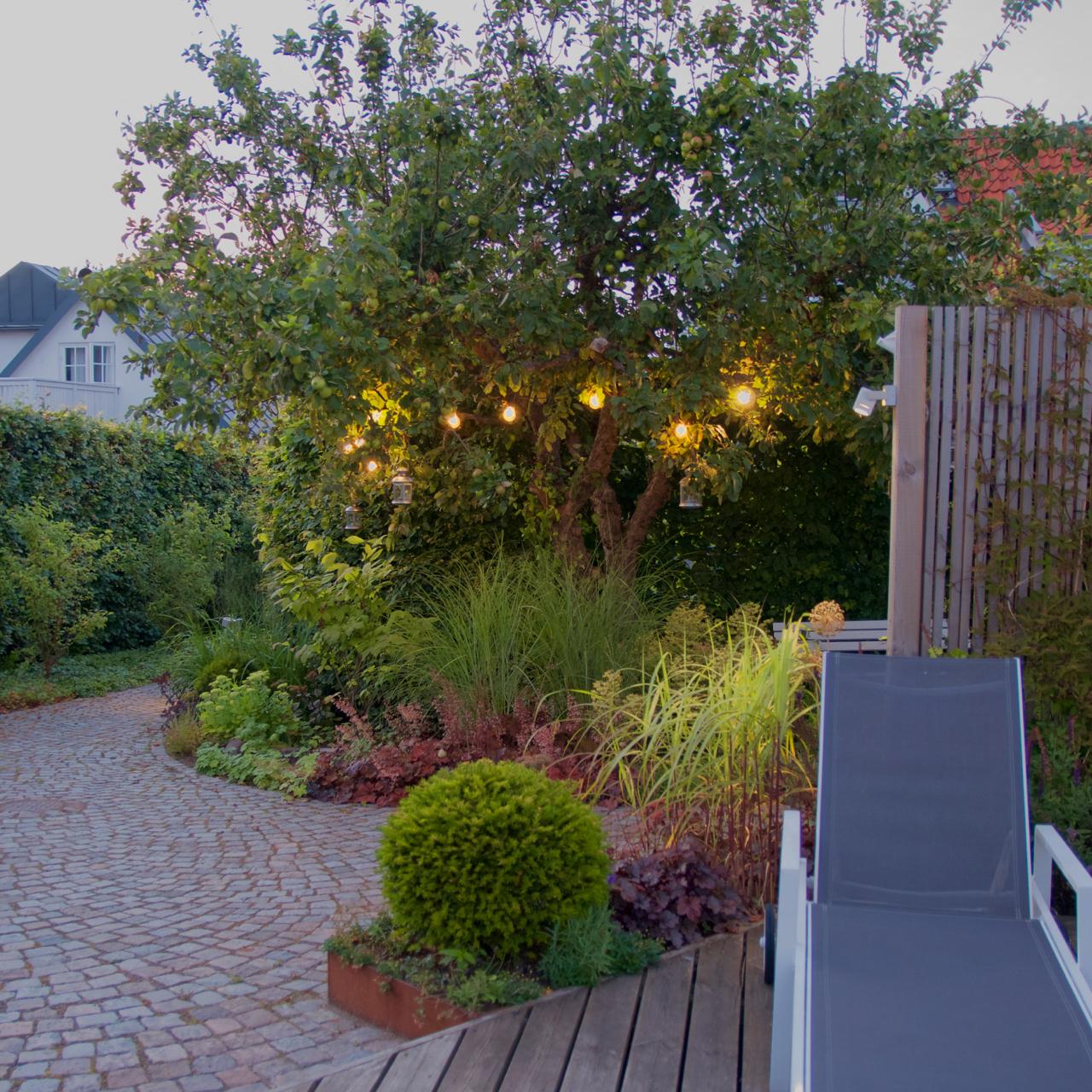 Ett hem arkiv   arkitektens trädgård