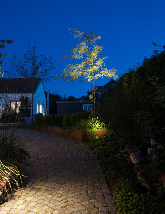 utebelysning trädgård jul