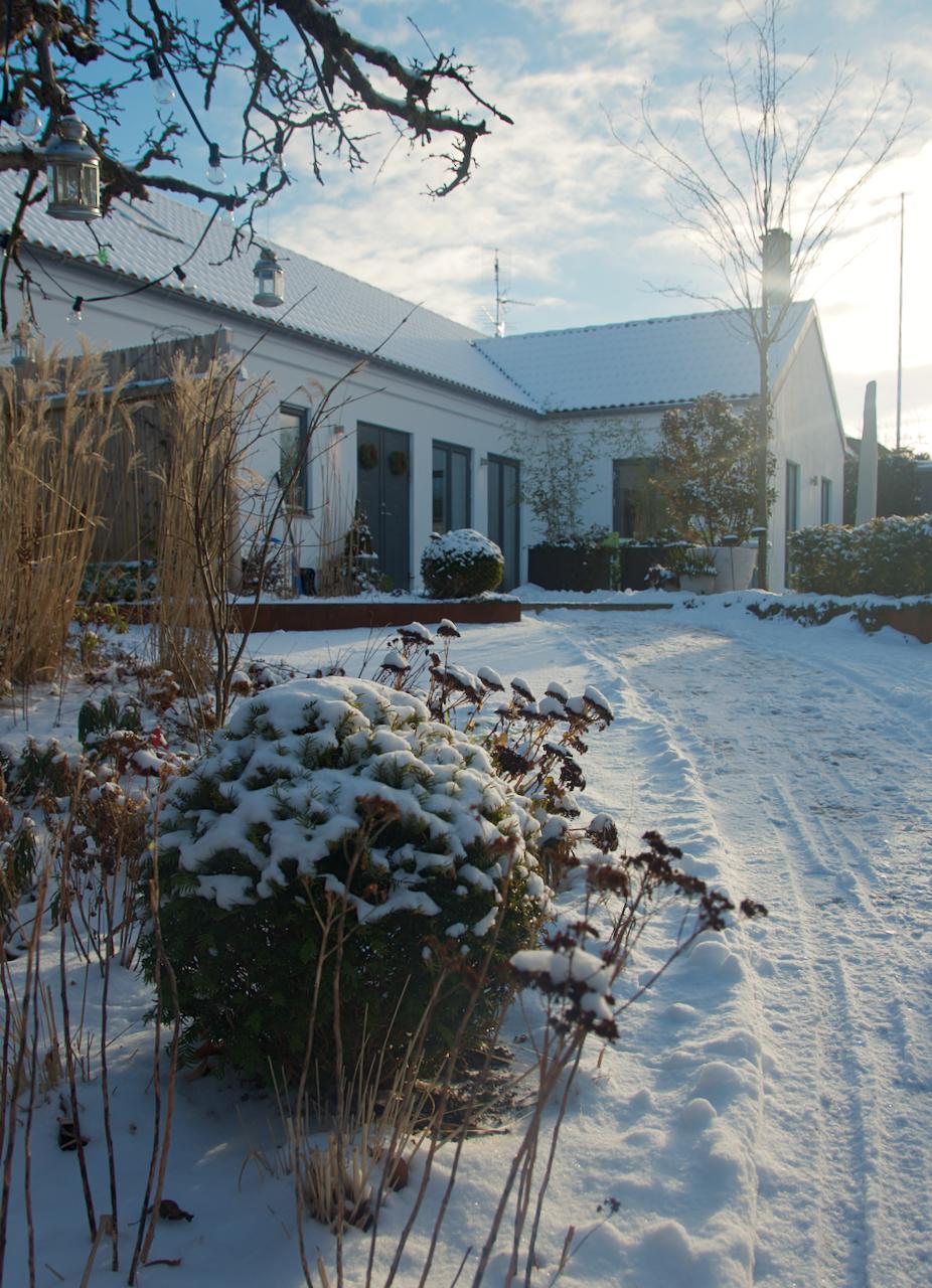 Sol, snö och tips på inspirerande hemsidor! - Arkitektens Trädgård