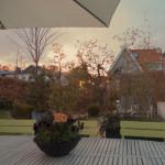 Ljuvliga vårkvällar och tips på trädgårdsdesigners