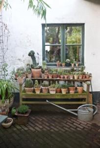 Trädgårdsrunda med Skumpa och Spaljé