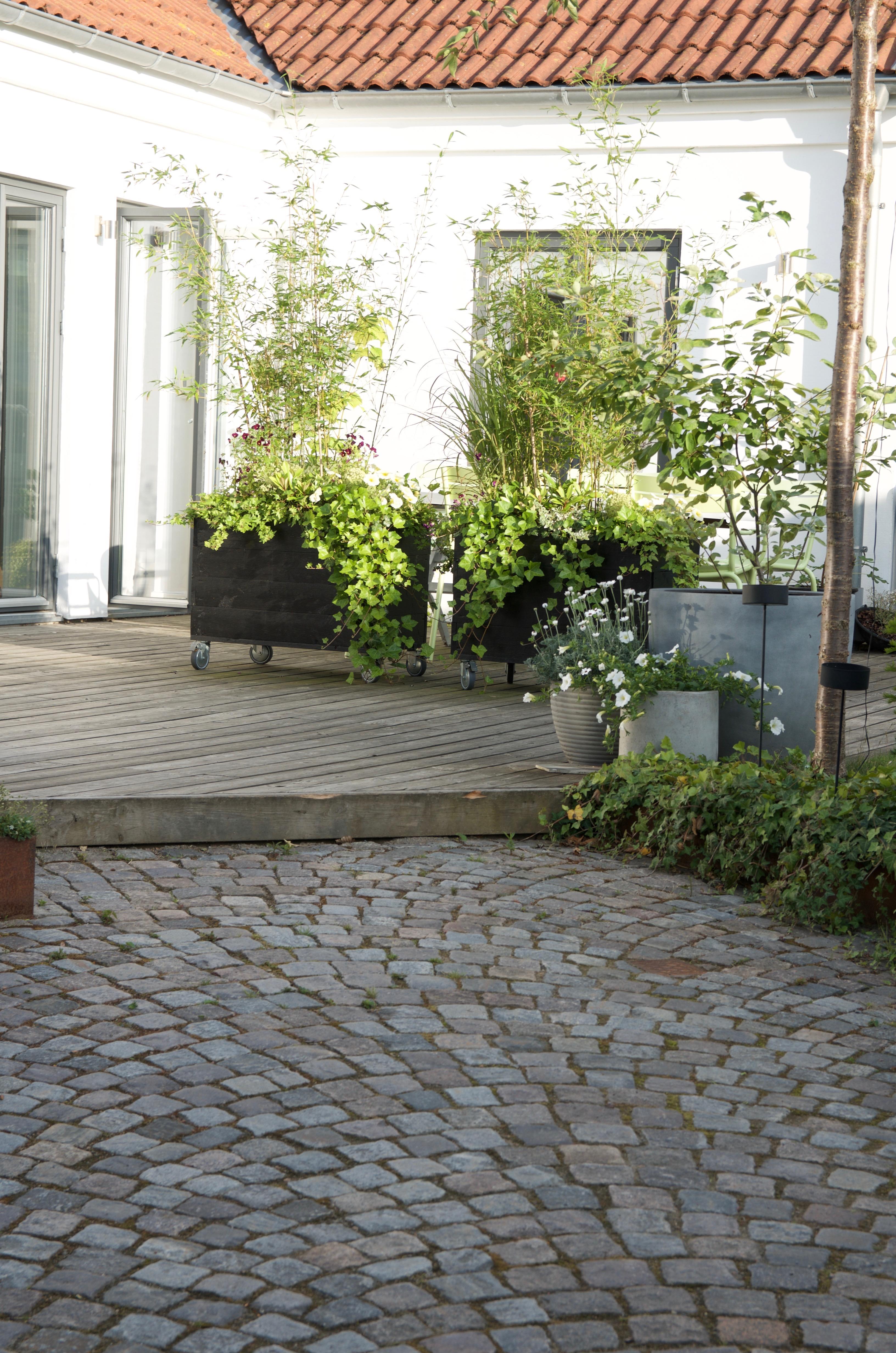 Trädgårdsdesign arkiv   arkitektens trädgård