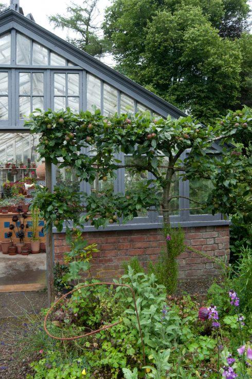 Önskelista och vårinspiration Arkitektens Trädgård
