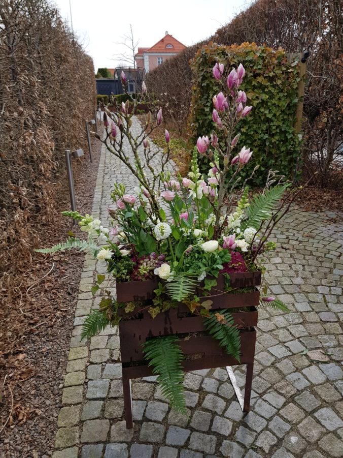 Frosttåliga vårblommor och blomsterarrangemang i rostiga